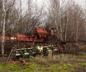Vehicle graveyard